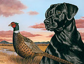 Gun Dog Productions art gallery